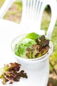 Salat in Salatschleuder